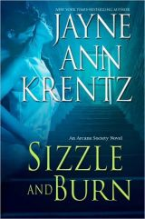 bookcover image of Sizzle and Burn